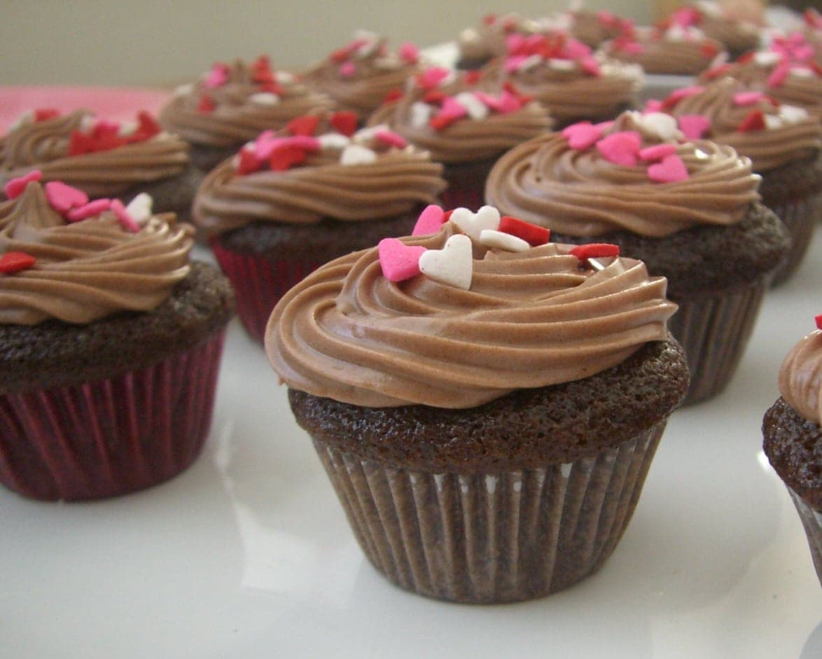 Valentineu0027s Day Idea Mini Chocolate Cupcakes with Chocolate Cream Cheese Frosting & Valentineu0027s Day Idea: Mini Chocolate Cupcakes with Chocolate Cream ...