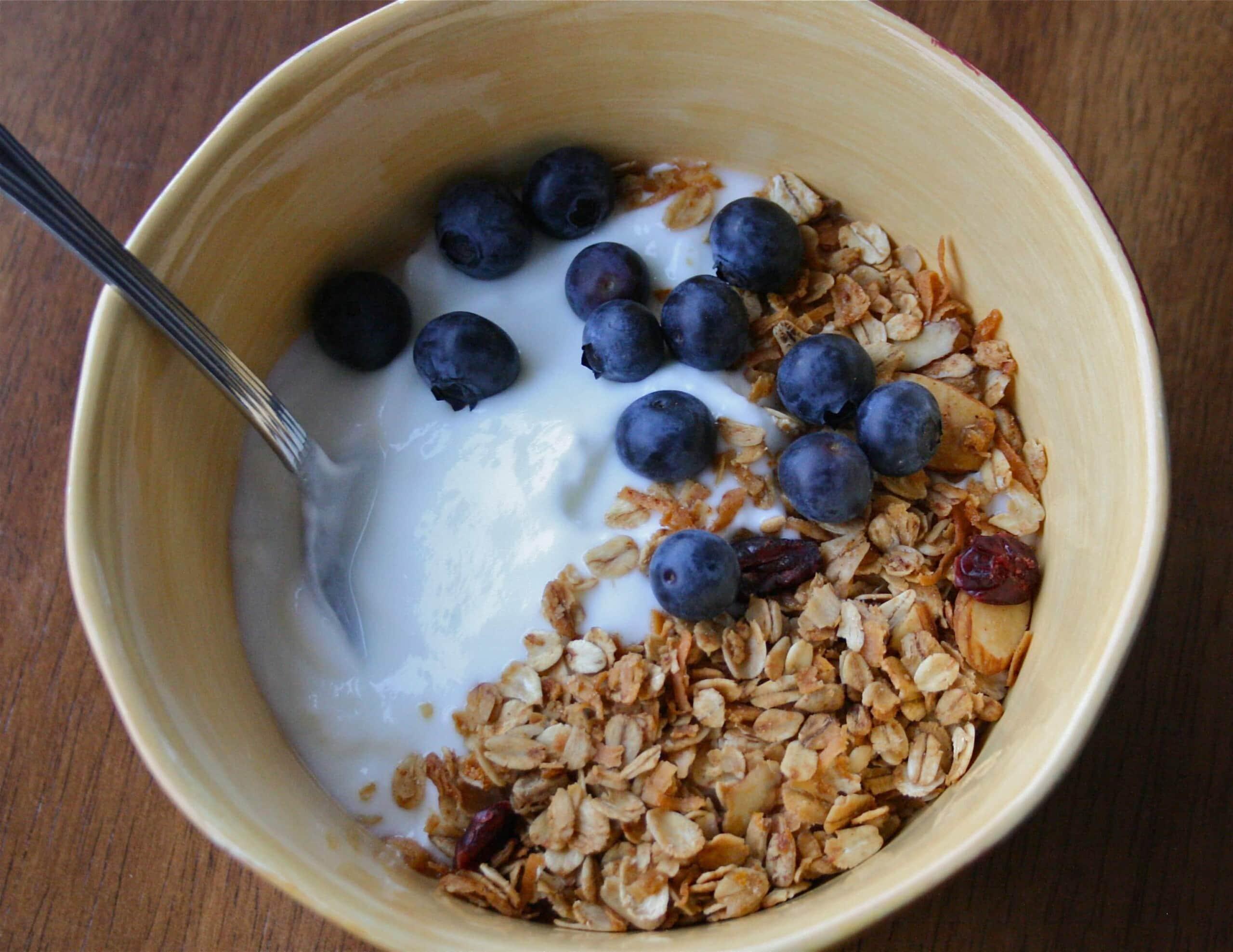 homemade greek yogurt with granola and blueberries