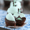 mint truffle brownies