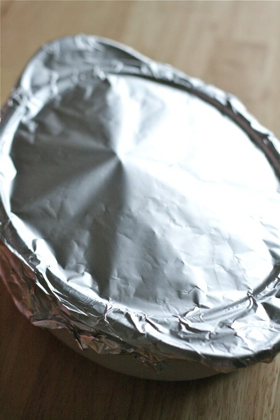 Shredded Mexican Pork