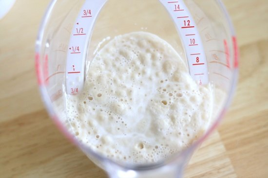 proofing yeast in a measuring cup