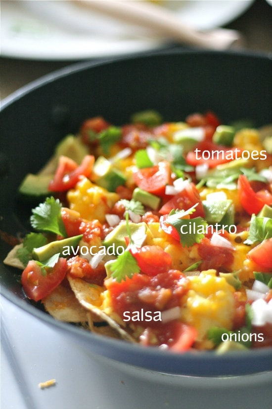 Tomatoes cilantro salsa and avocado on top of cheese