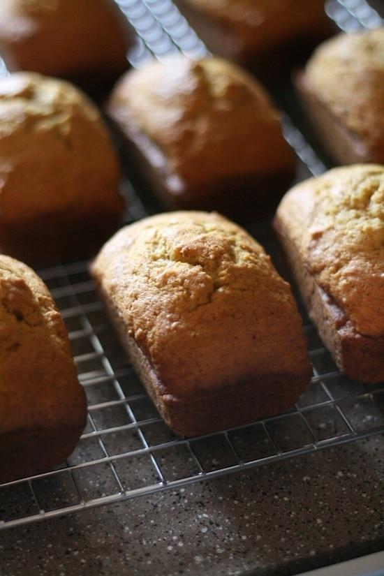Pumpkin Bread Mini Loaves on cooling wracks