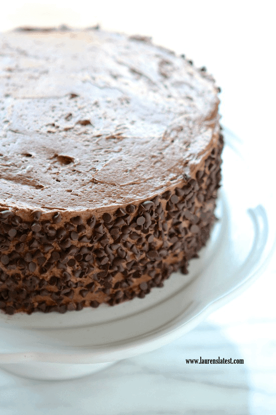 Perfect Chocolate Cake 1