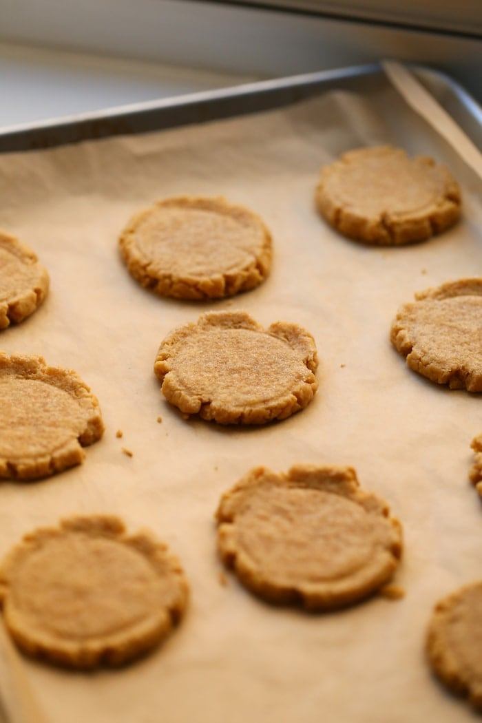 pumpkin sugar cookies on a baking sheet without icing