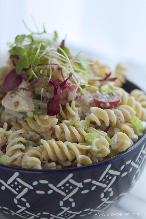 Chicken and Pecan Pasta Salad