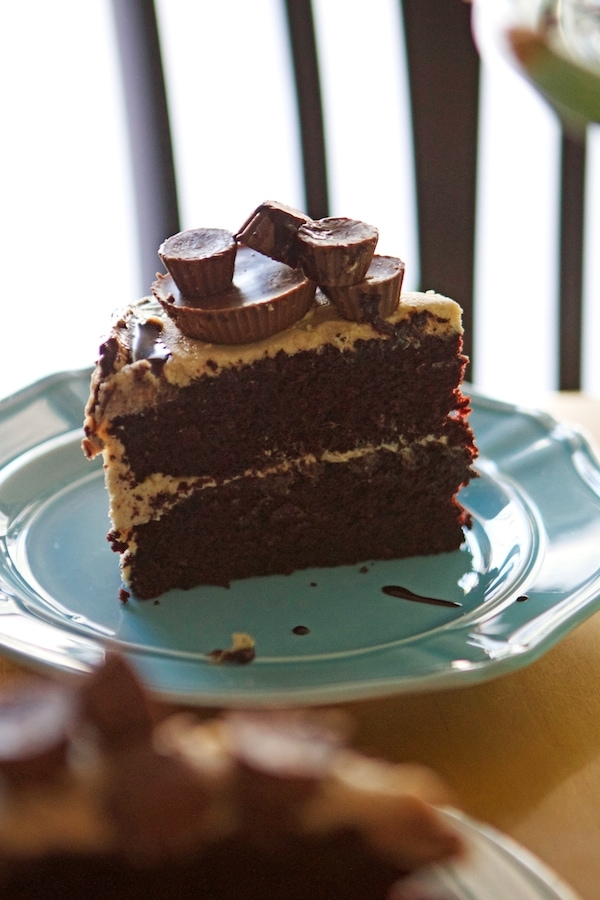 Slice of Peanut Butter Cup Cake