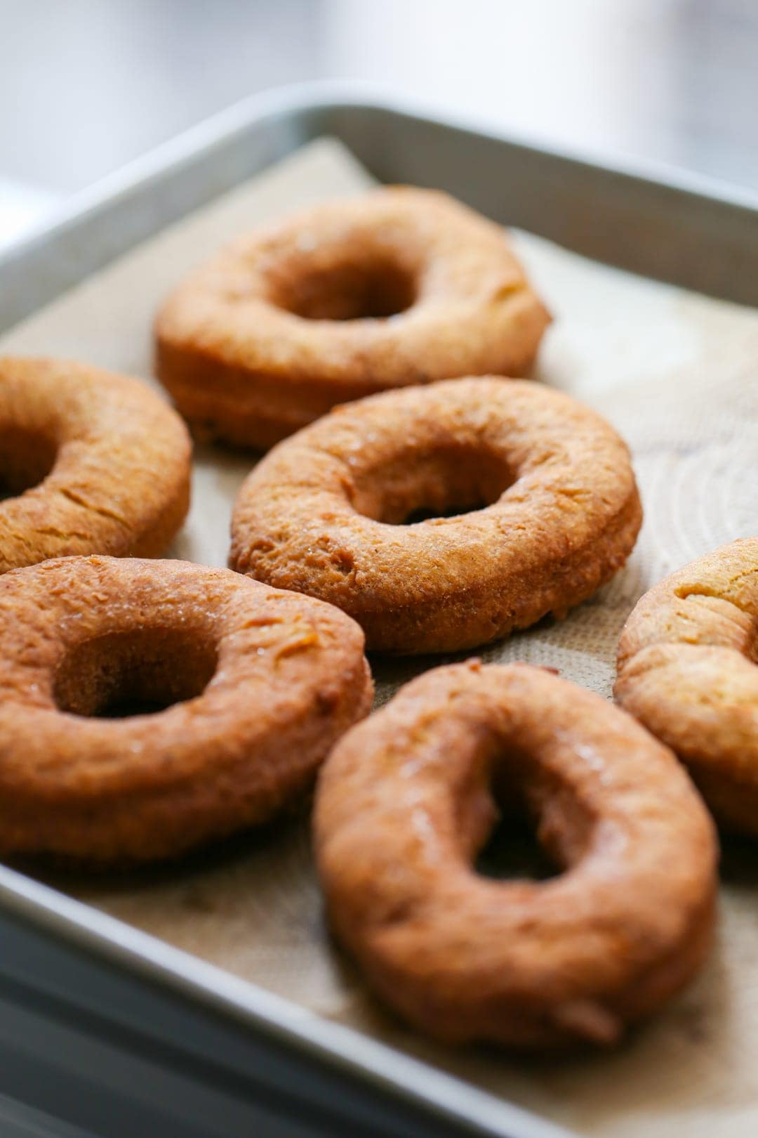 unglazed pumpkin donuts on paper towels