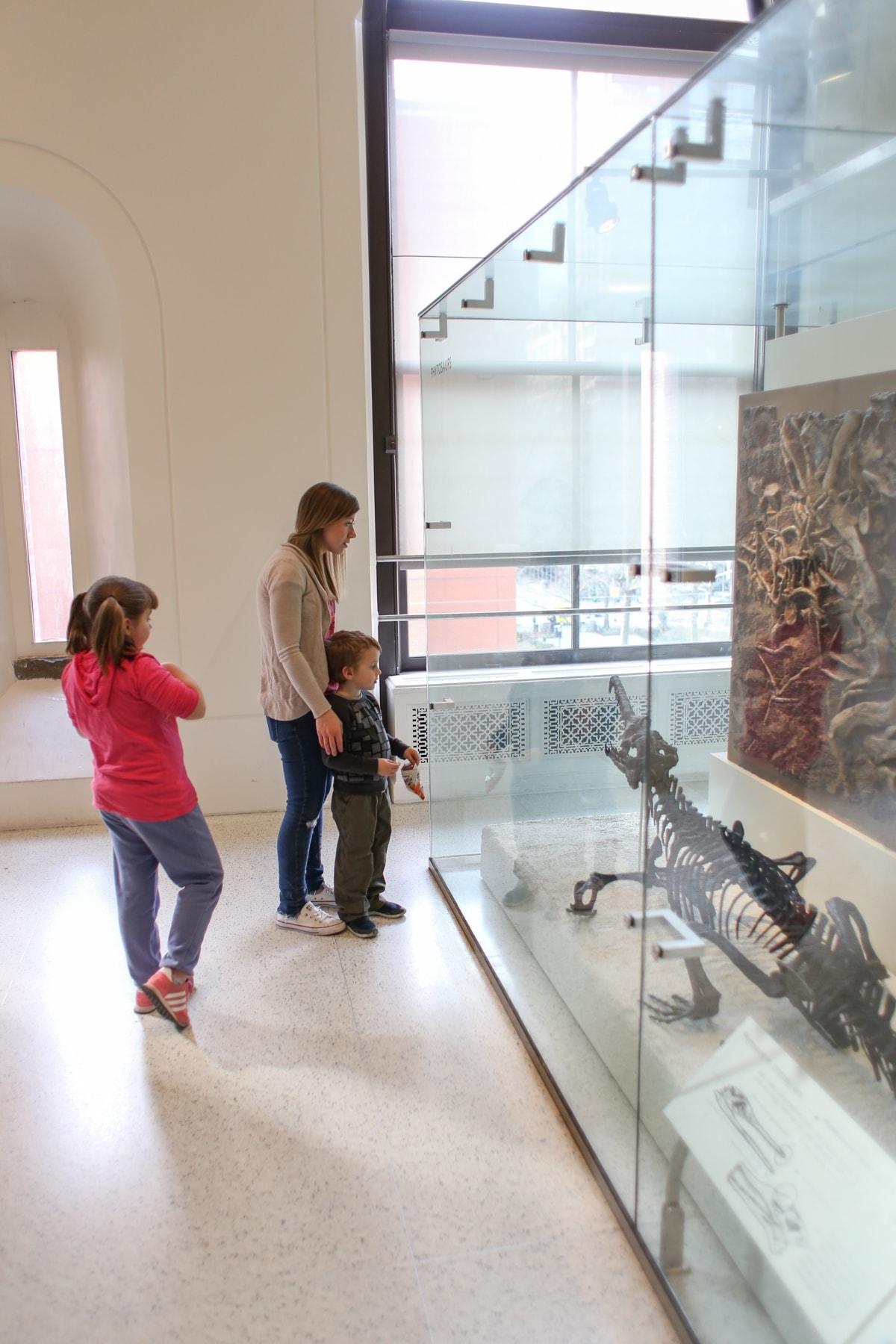 Lauren Brooke and Blake looking at a dinosaur skeleton