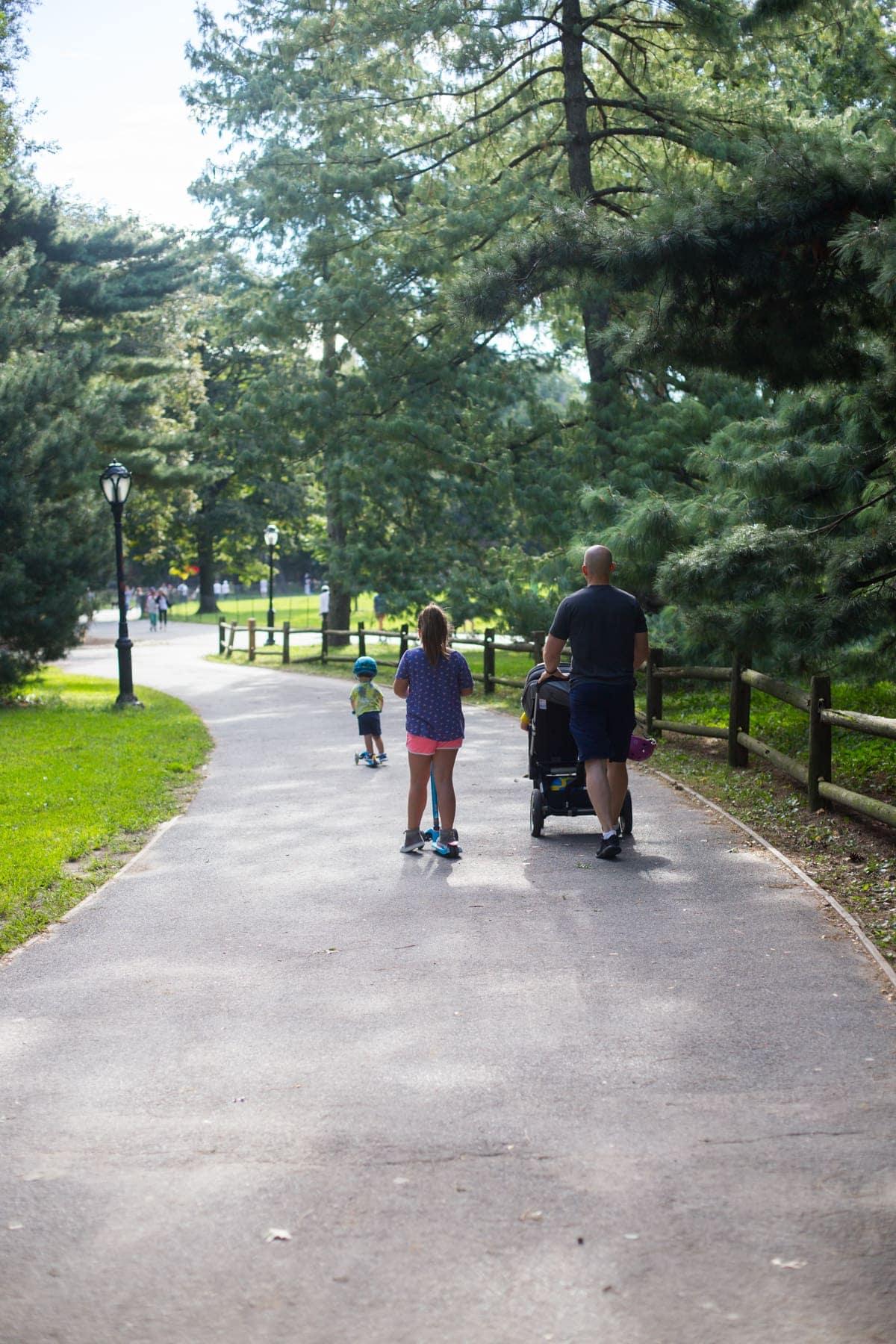 Gordon and the kids down a path