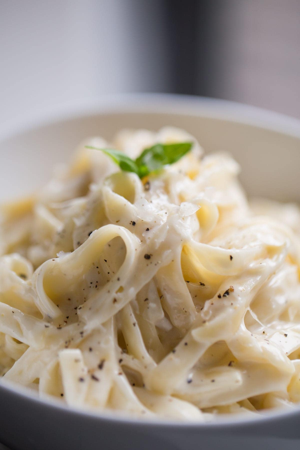 Best Alfredo Sauce Recipe Homemade