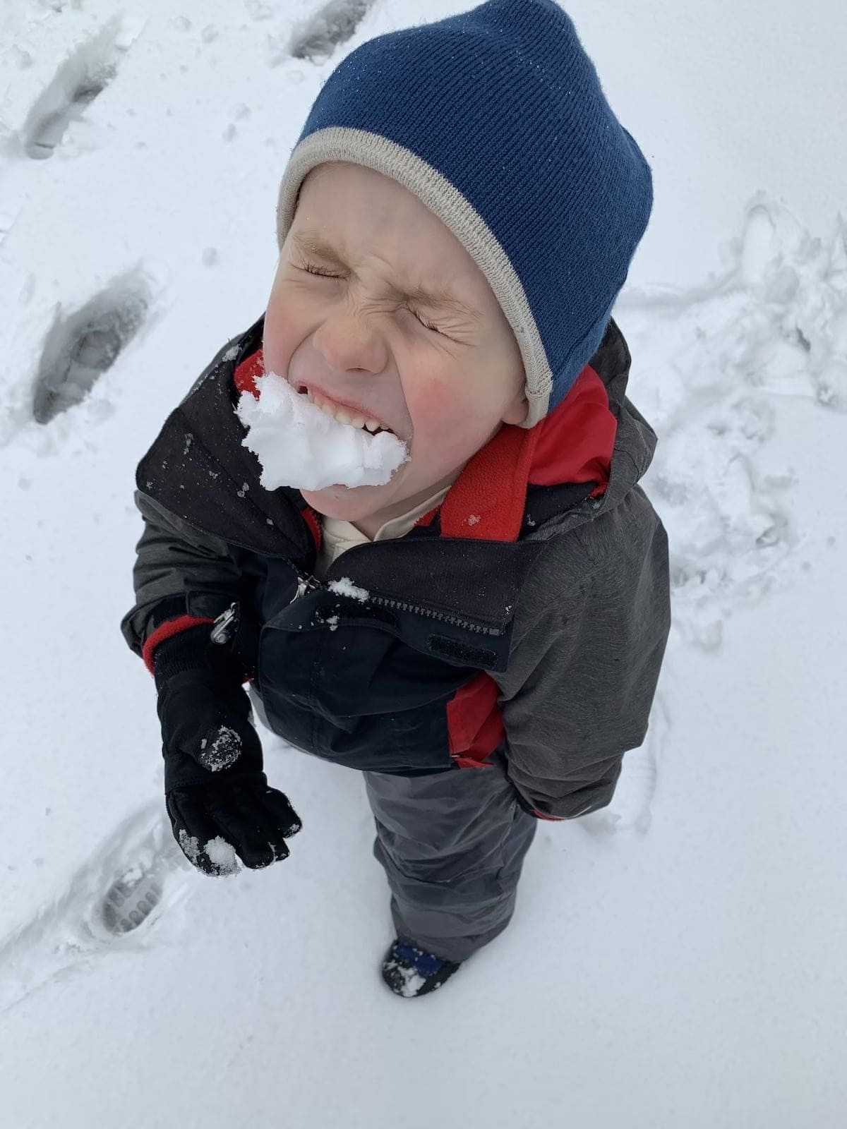 blake with snow in his mouth