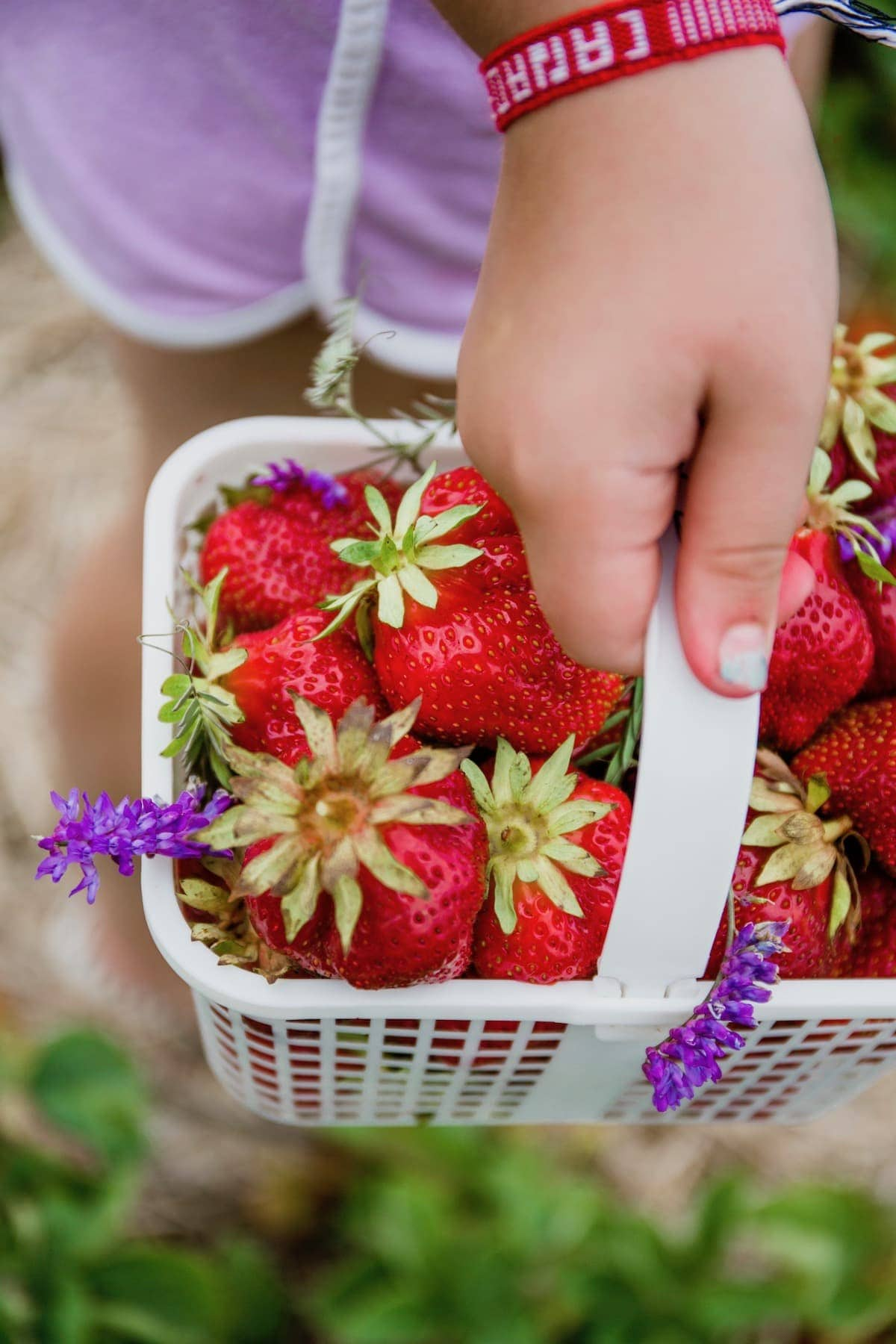 Close up of Brookes strawberry basket filled with strawberries and flowers