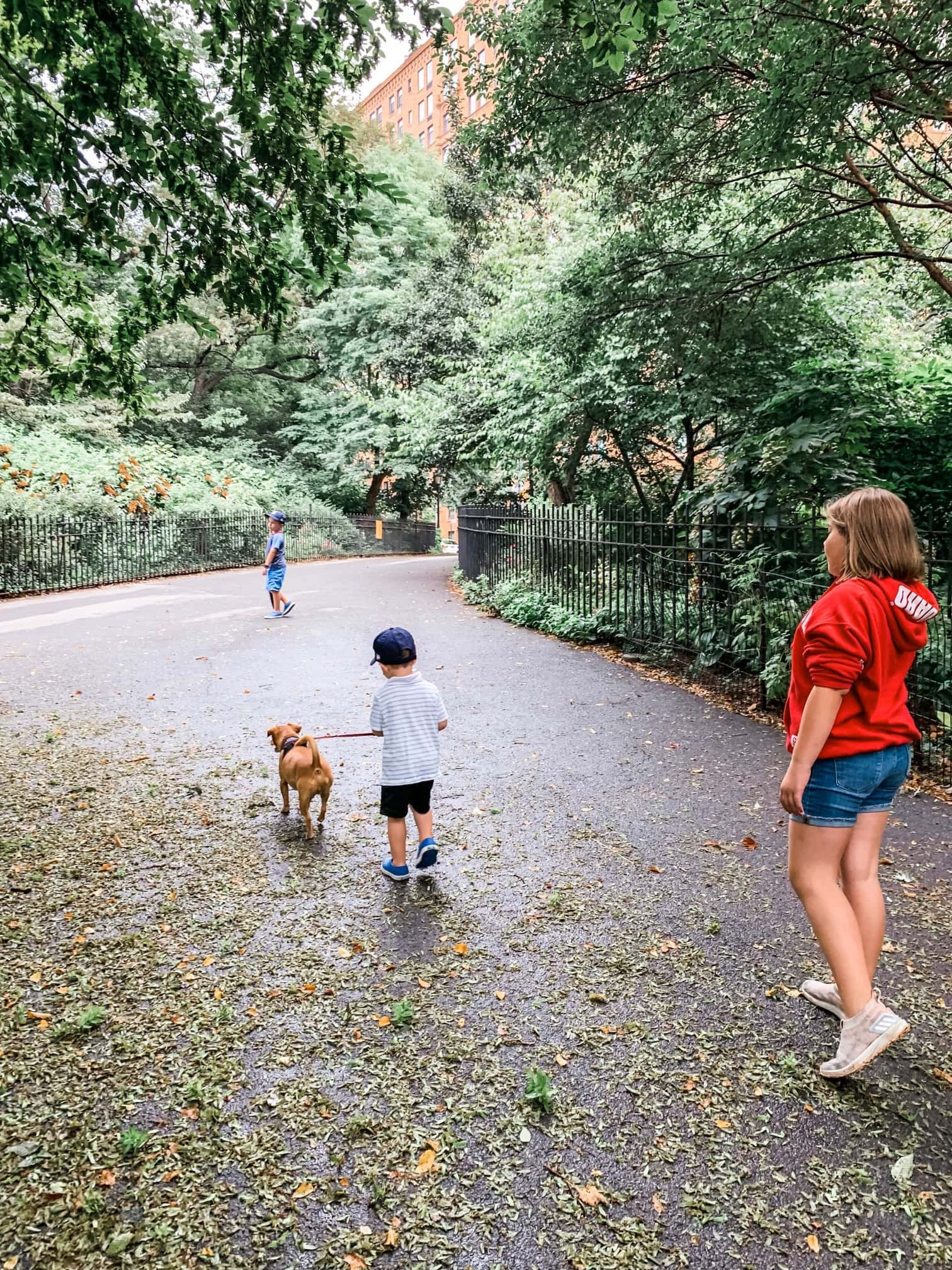 Brooke Eddie and Blake walking a dog