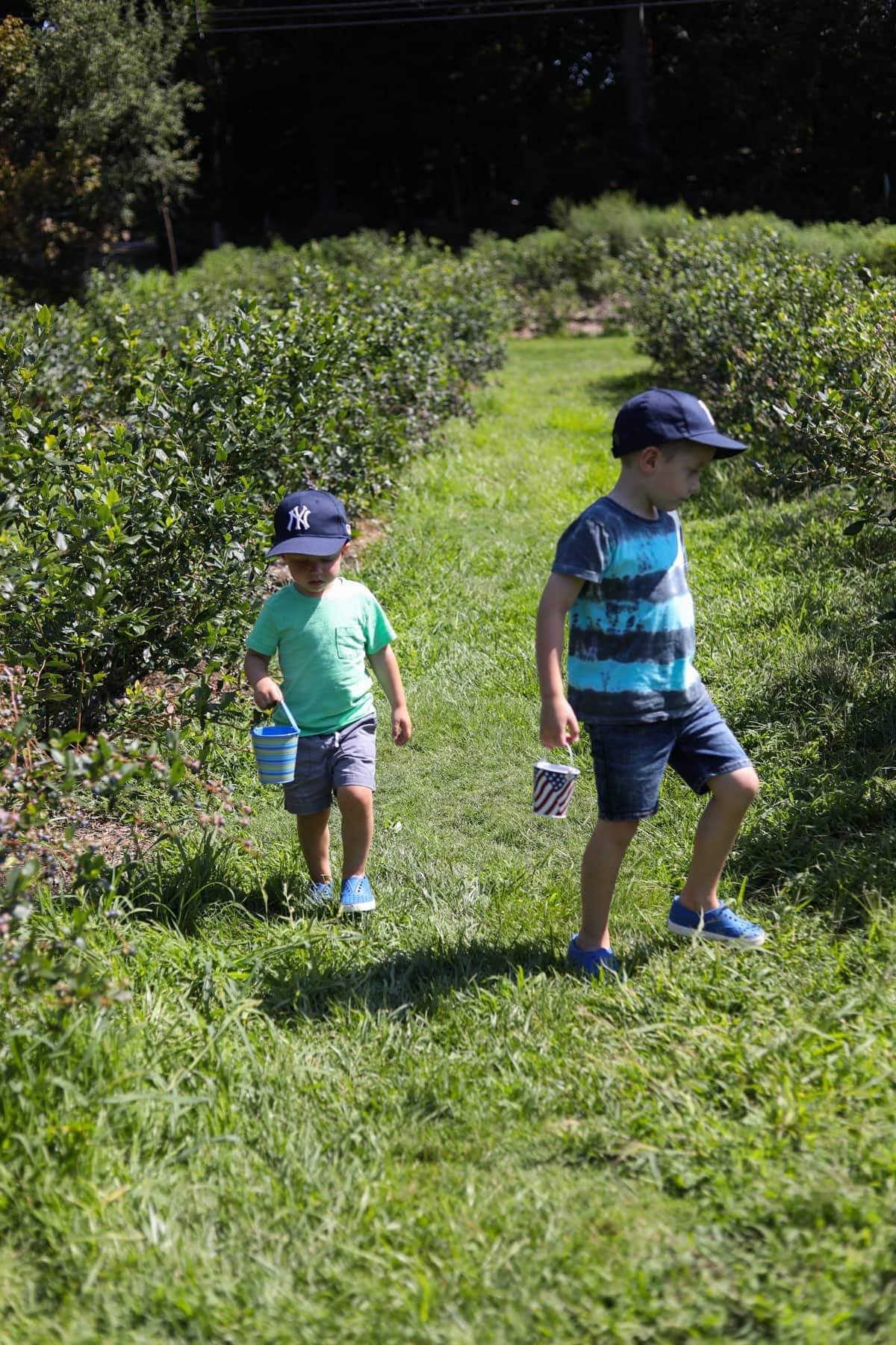 Blake and Eddie at a berry farm