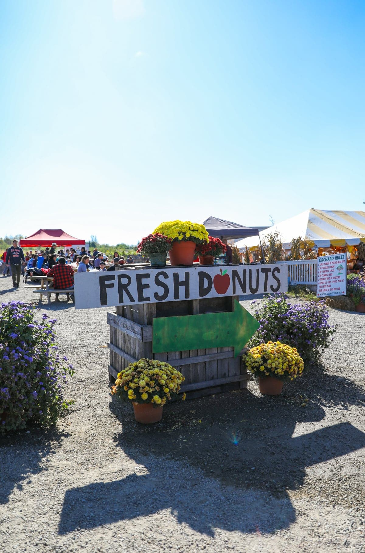 Fresh Donuts sign at the pumpkin patch