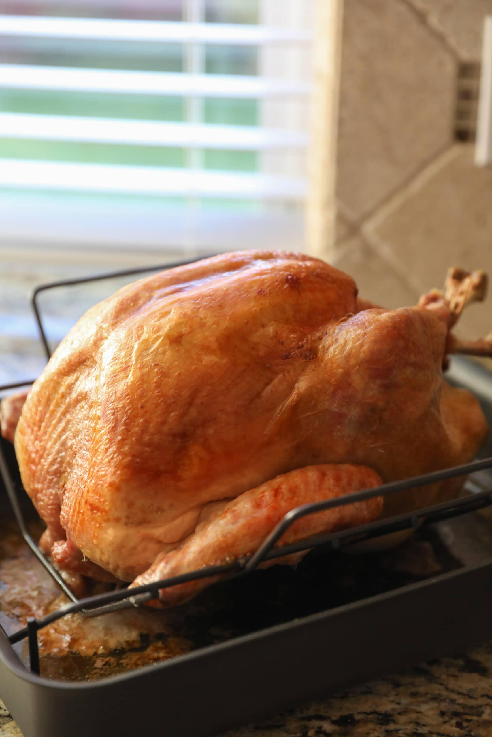 roasted turkey in roasting pan