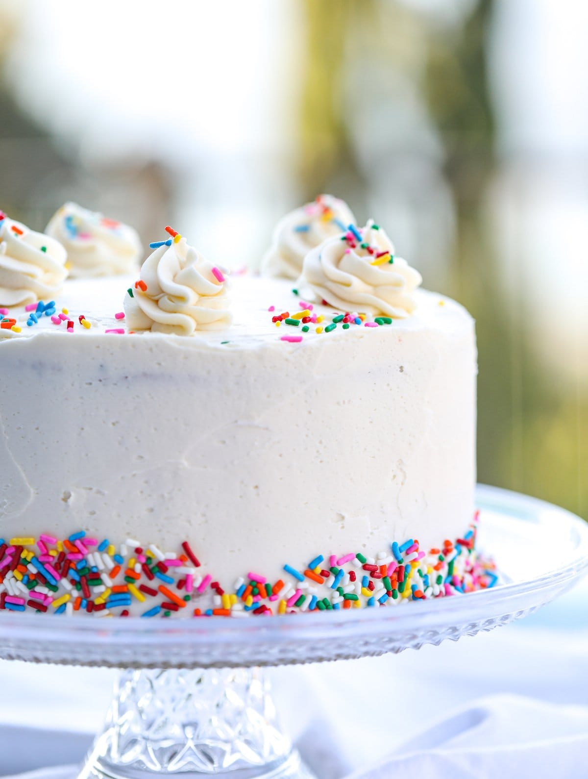 whole frosted funfetti cake with sprinkles