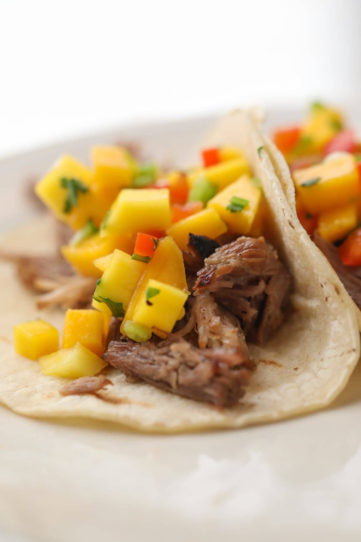 carnitas on corn tortilla with mango salsa