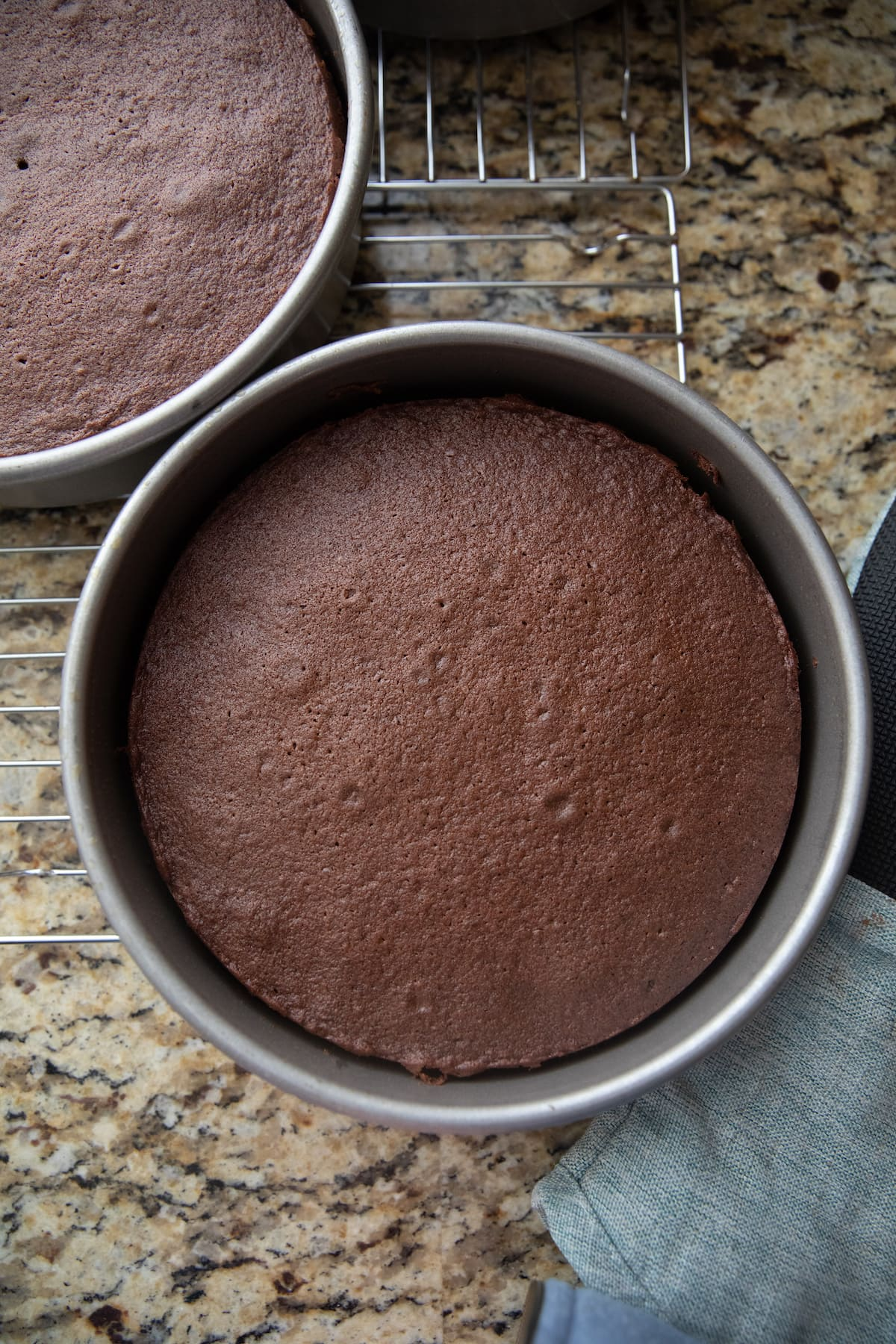 baked chocolate cake in pans