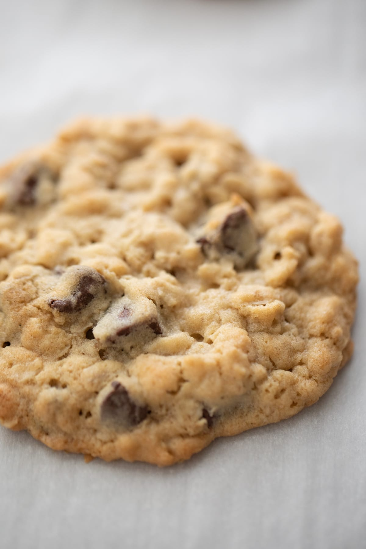 oatmeal chocolate chip cookies on baking sheet