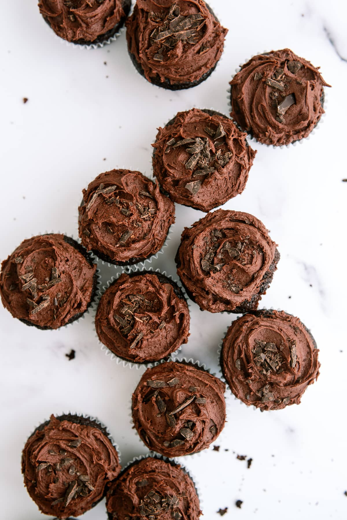 group of chocolate cupcakes with chocolate frosting
