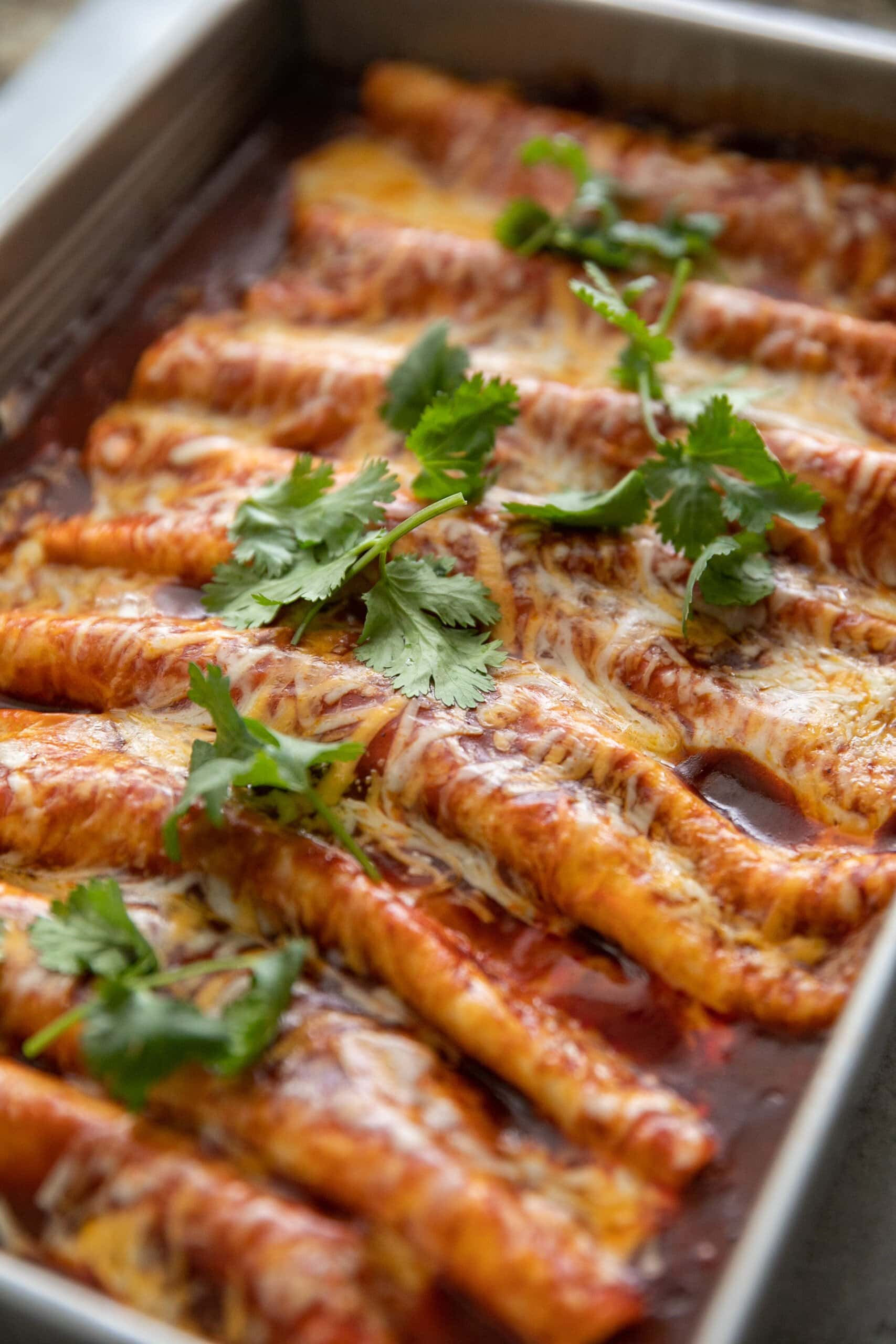 several beef enchiladas lined up in a baking dish topped with fresh cilantro