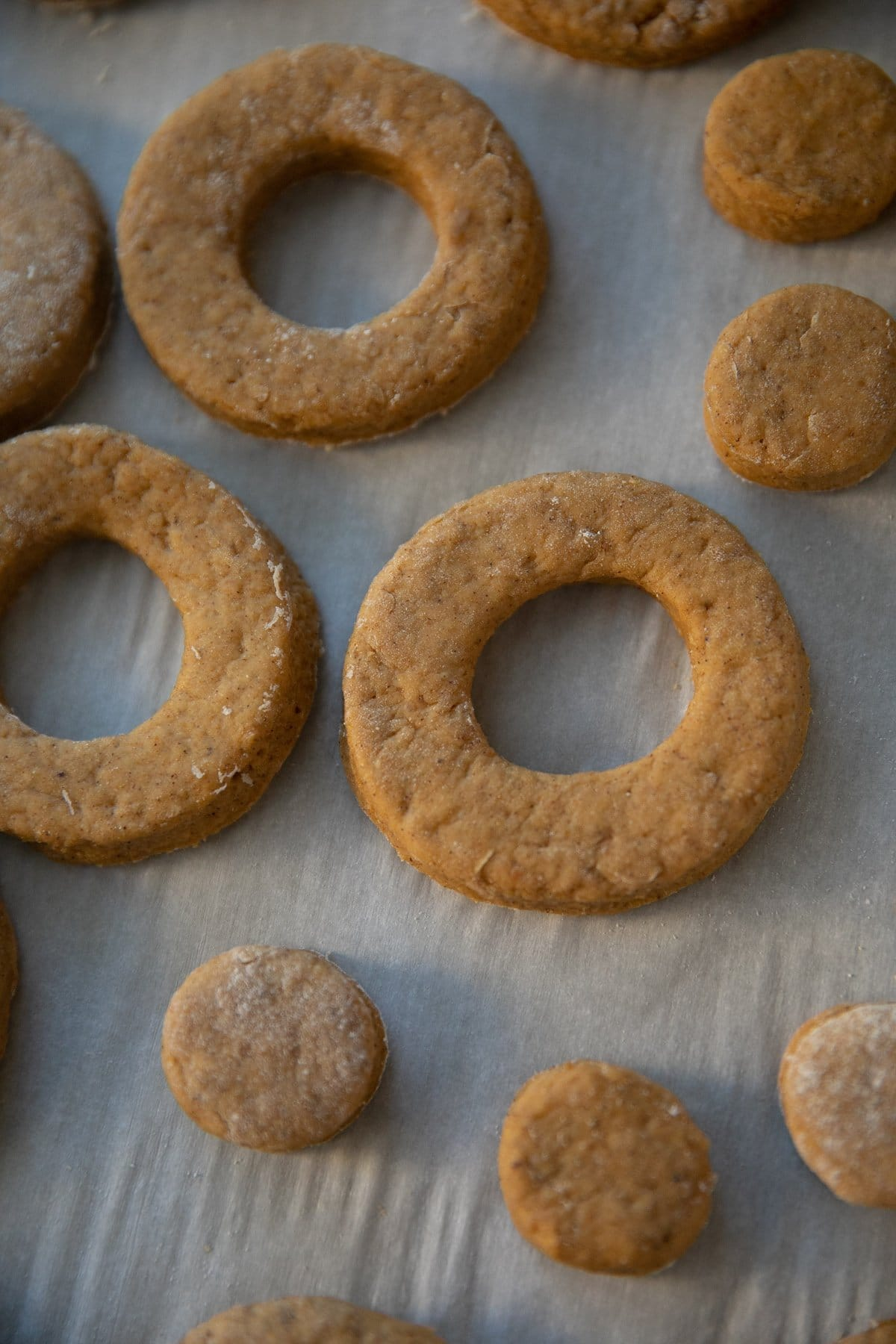 cut out unbaked pumpkin donuts and donut holes on parchment paper
